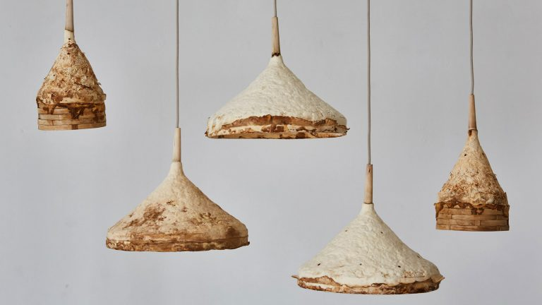 sustainable furniture - fungus lights