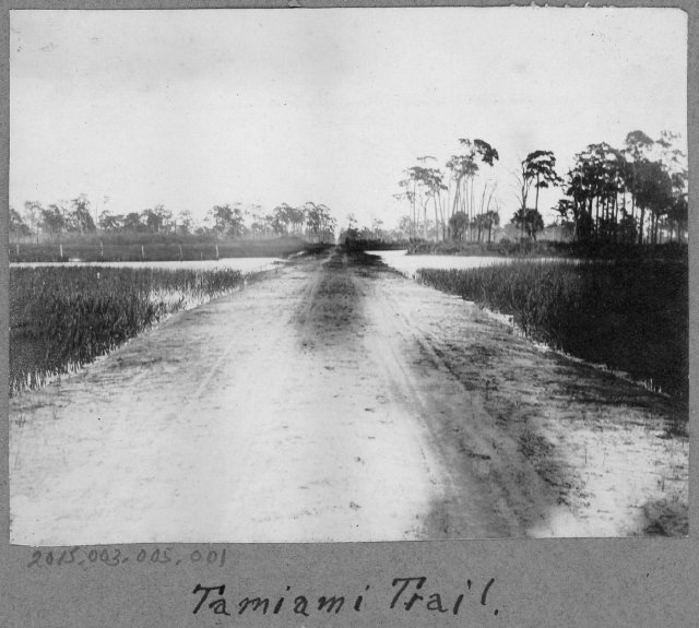 Tamiami Trail, FL
