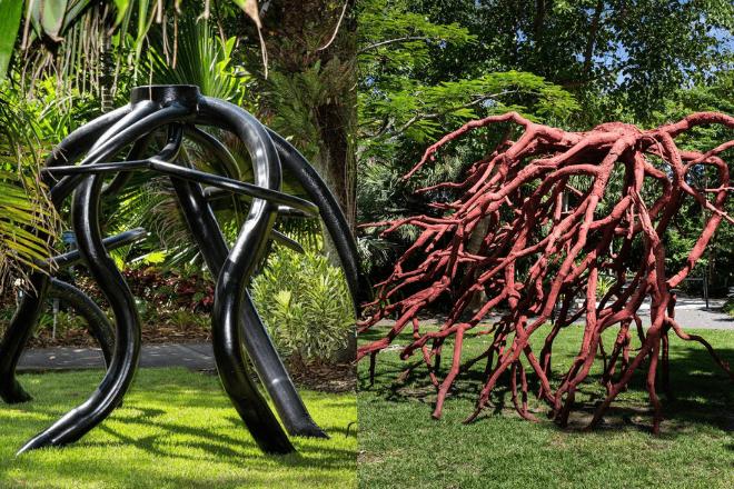 Steve Tobin Naples Botanical Gardens